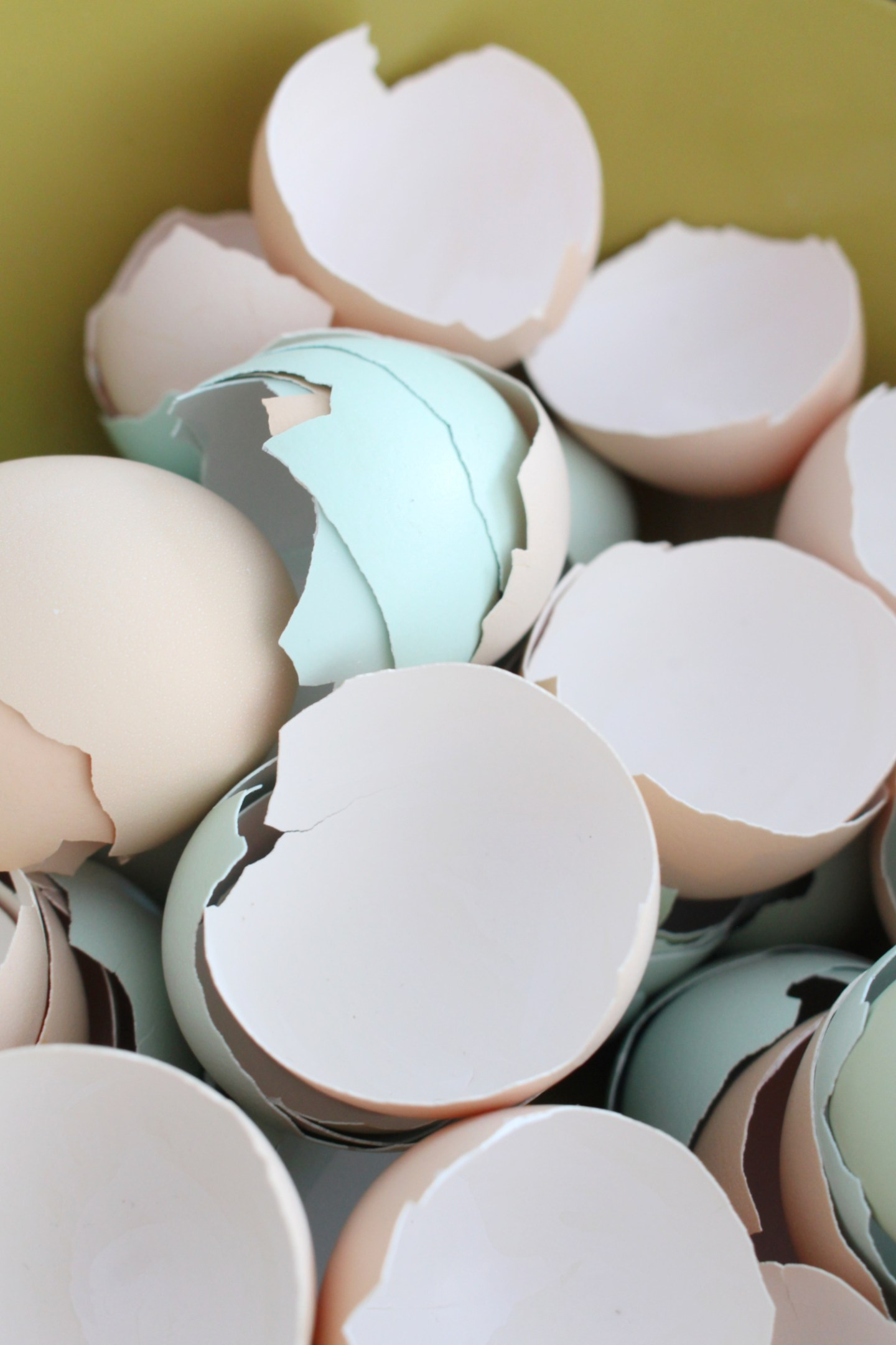 Crafts to Make with Egg Shells