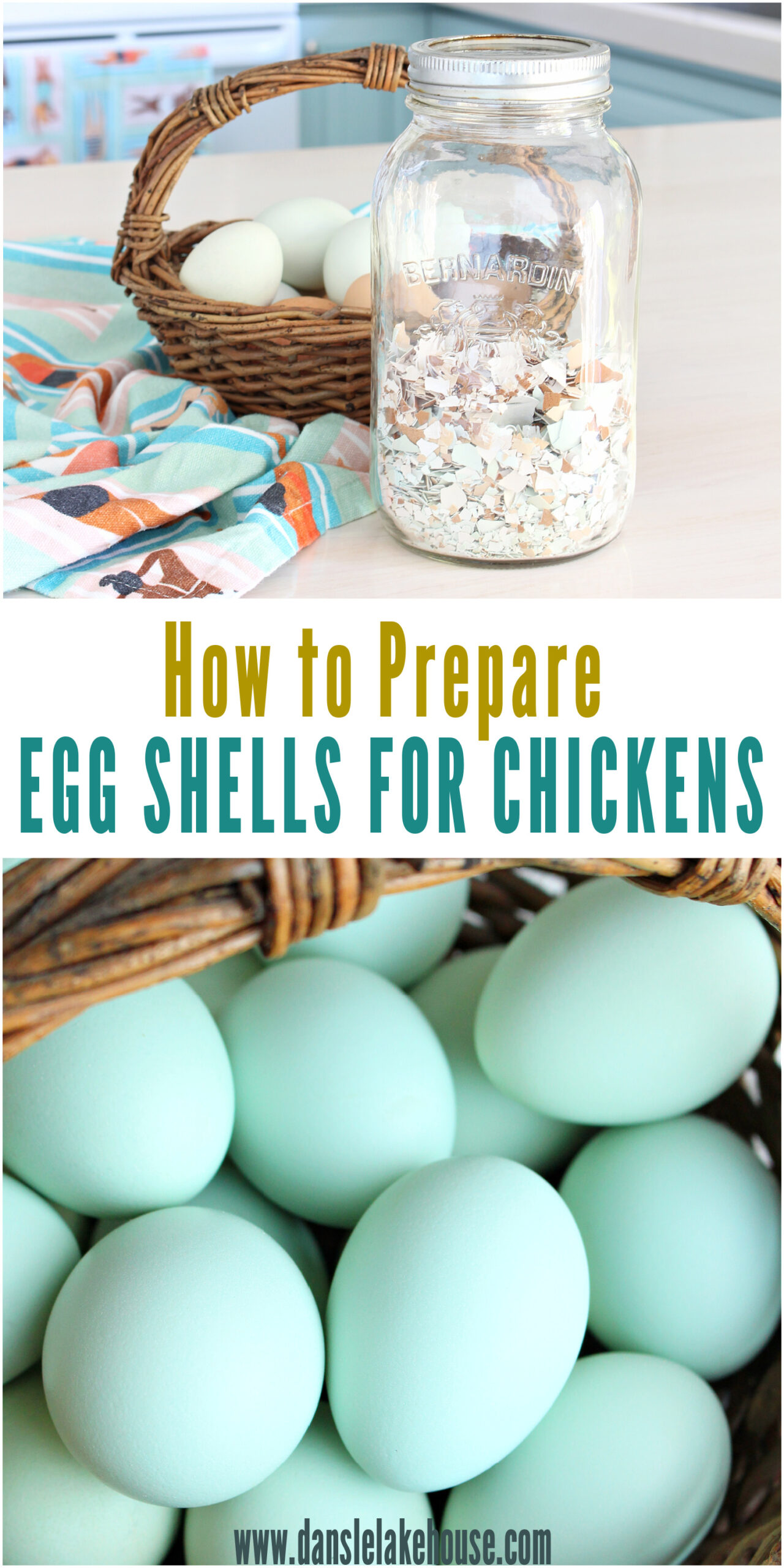 How to prepare egg shells for chickens