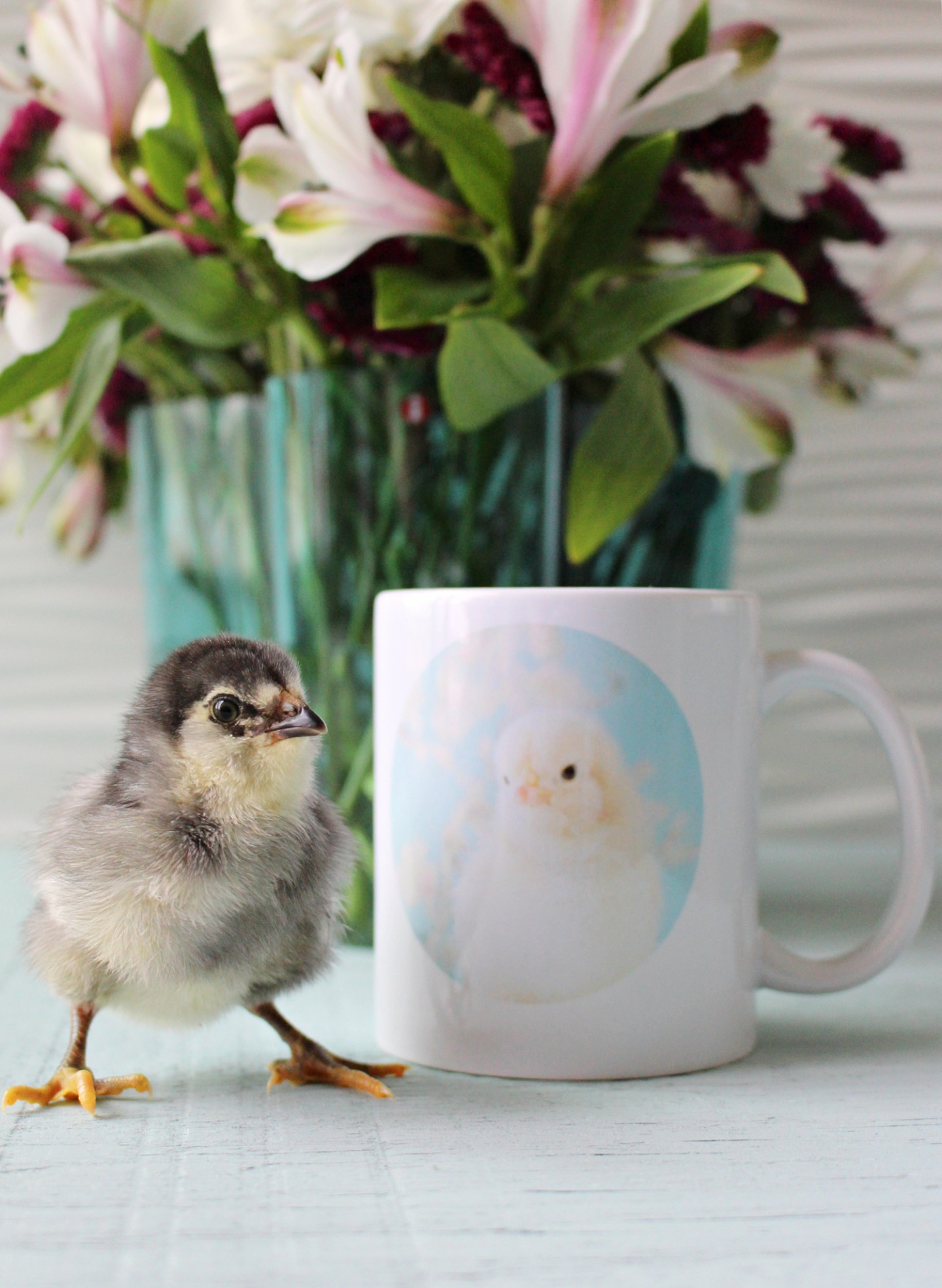 custom printed chick mug