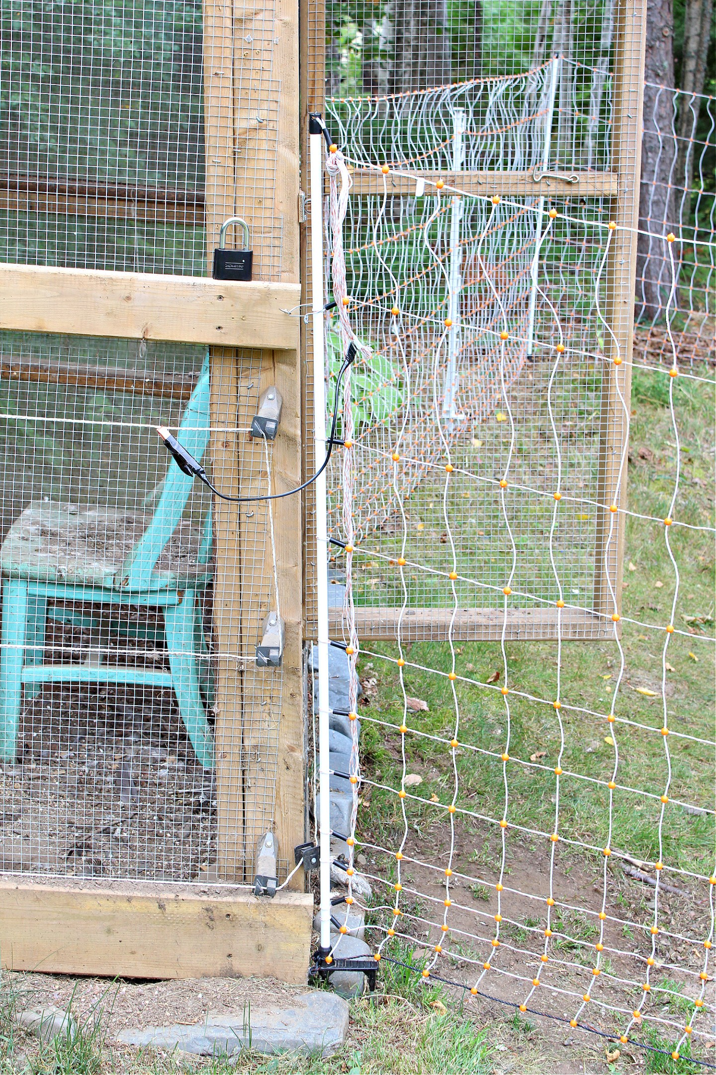 Electric Fencing on Chicken Run