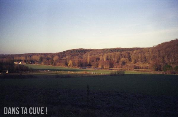 Un petit paysage de campagne...