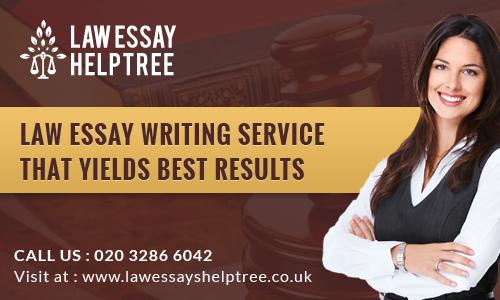 law essay help tree