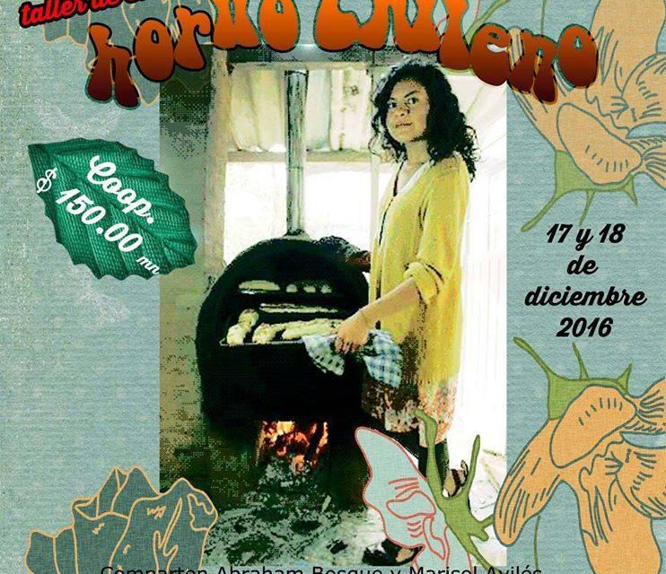 Taller de Horno Ecologico Chileno