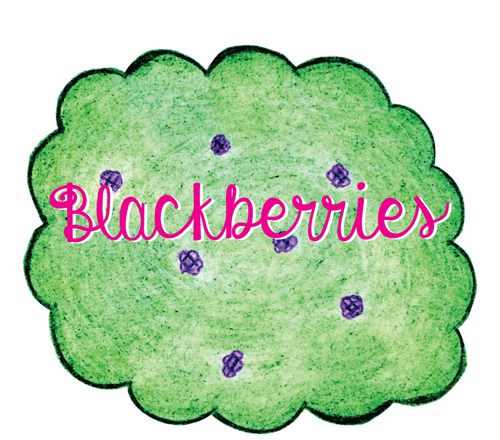 Blackberries2-500
