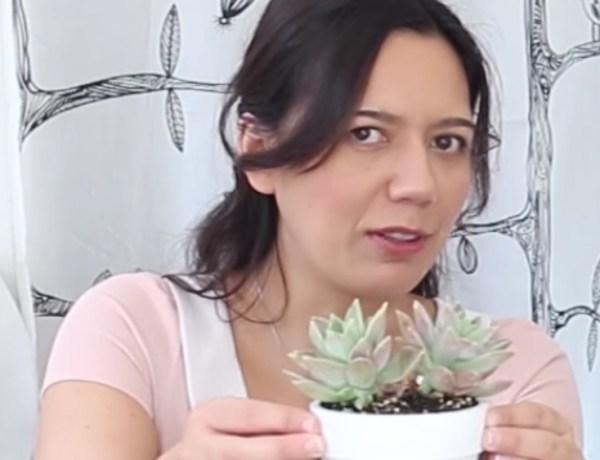 Dip Dye flower pots ombre tutorial