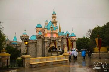 DisneylandResortRainyDay-28
