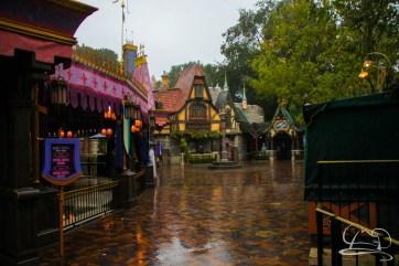 DisneylandResortRainyDay-35