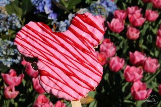 Disneyland Valentines Sweet Treats-17