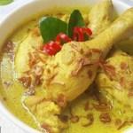 Resep Makanan yang mengandung curcuma pencegah Corona Opor ayam