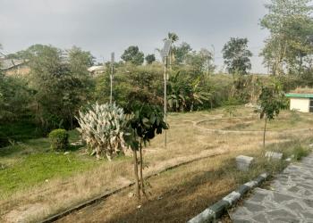 Taman Hijau yang tak terawan di depan Puskesmas Kutawaringin (Foto: Fattah)