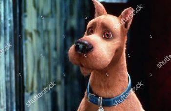 Scooby Doo. (Shutterstock)