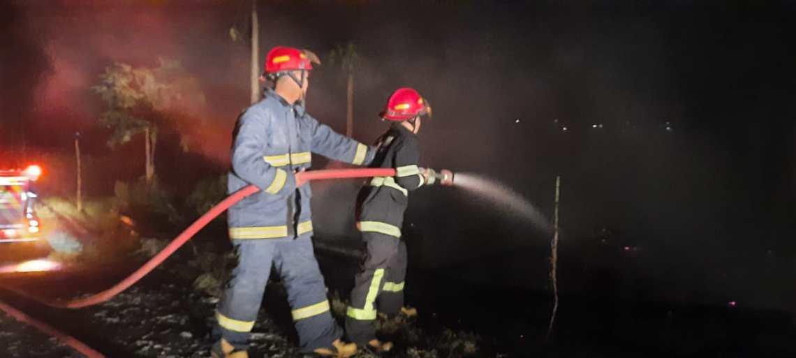 Peternakan ayam terbakar (Foto: Istimewa)
