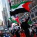 Ribuan demonstran di sejumlah Amerika Utara dan Eropa, termasuk orang Yahudi, menggelar aksi solidaritas membela Palestina dalam konflik dengan Israel. (REUTERS/Eduardo Munoz/CNNIndonesia)