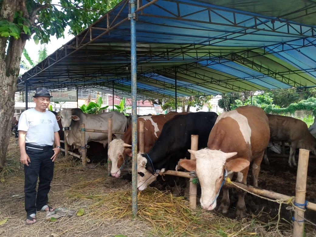Petugas DKP3 Kota Sukabumi saat memantau dan memeriksa kesehatan hewan kurban di salah satu lapak di Kecamatan Cibereum (Foto: Riri Satiri/dara.co.id)