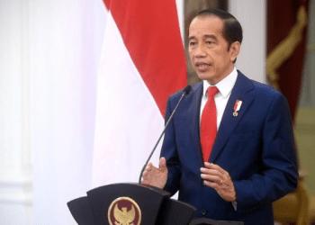 Presiden Jokowi (Foto: BPMI Setpres)