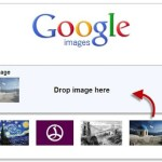 Exalting the website quality through Google image search