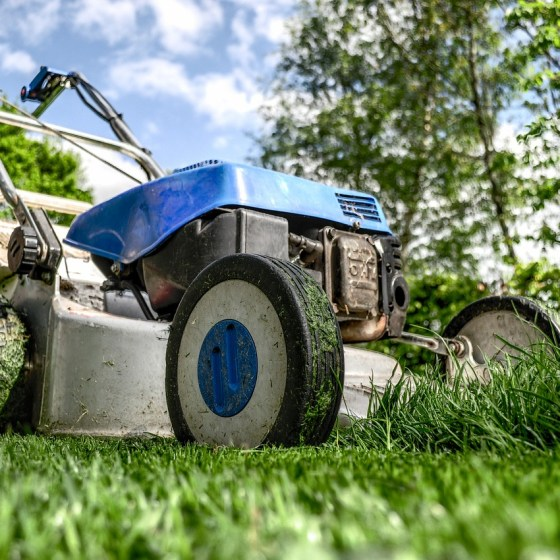 lawn mower business