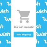 App Review For Wish.Com