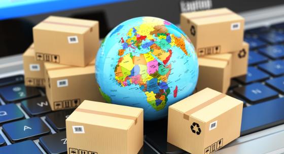 Export startup business