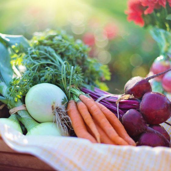vegetables health