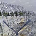 Benefits of Concertina Coil Fence
