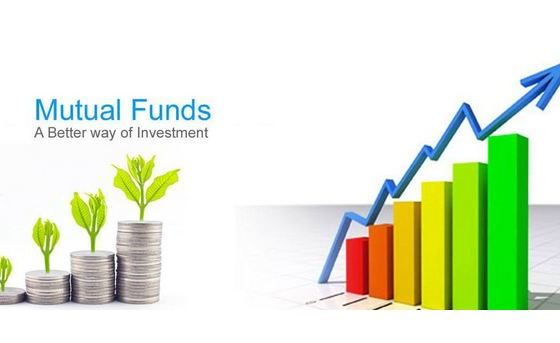 Mutual Investment