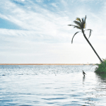 Spend a Glorious Tour to the Unexplored South Indian Places