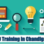 Know Some Of The Facts Related To SEO Services In Chandigarh