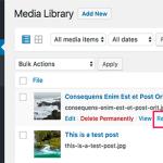 How to Regenerate Thumbnails in WordPress