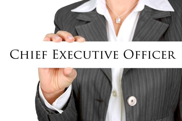 Hiring a best CEO