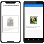 Using CarouselView Data In Xamarin-Forms