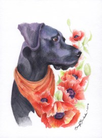 Dino   Watercolor by Darcy Goedecke