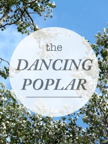 The-Dancing-PoplarWeb
