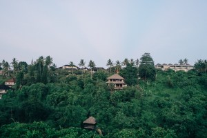 View From Intuitive Flow Yoga Studio Ubud