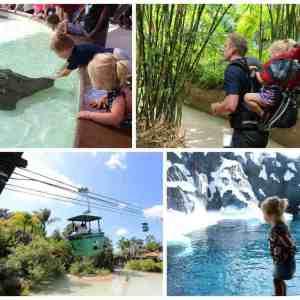 san diego family vacation zoo seaworld