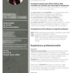 mise en page cv resume mockup
