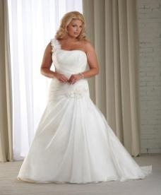 Plus Size Bridal Gowns - Off the Rack or Internet?