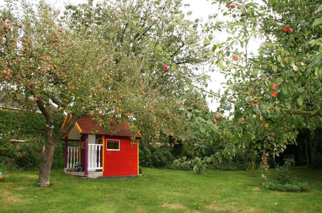 Zwei Apfelbäume Foto
