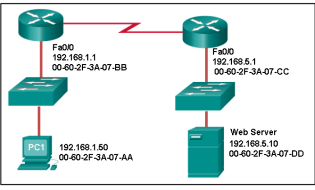 Cisco CCNA 1 Routing and Switching : Ethernet Chapter 5 Quiz 5