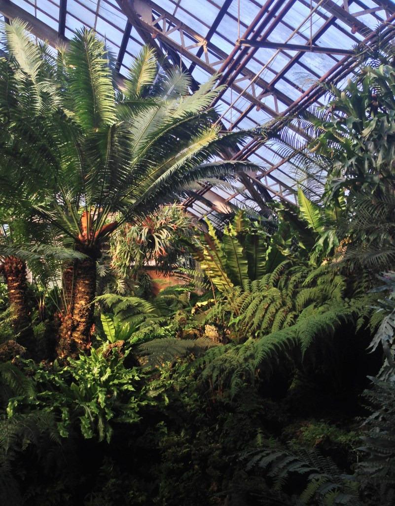 Lincoln Park Conservatory, Chicago IL