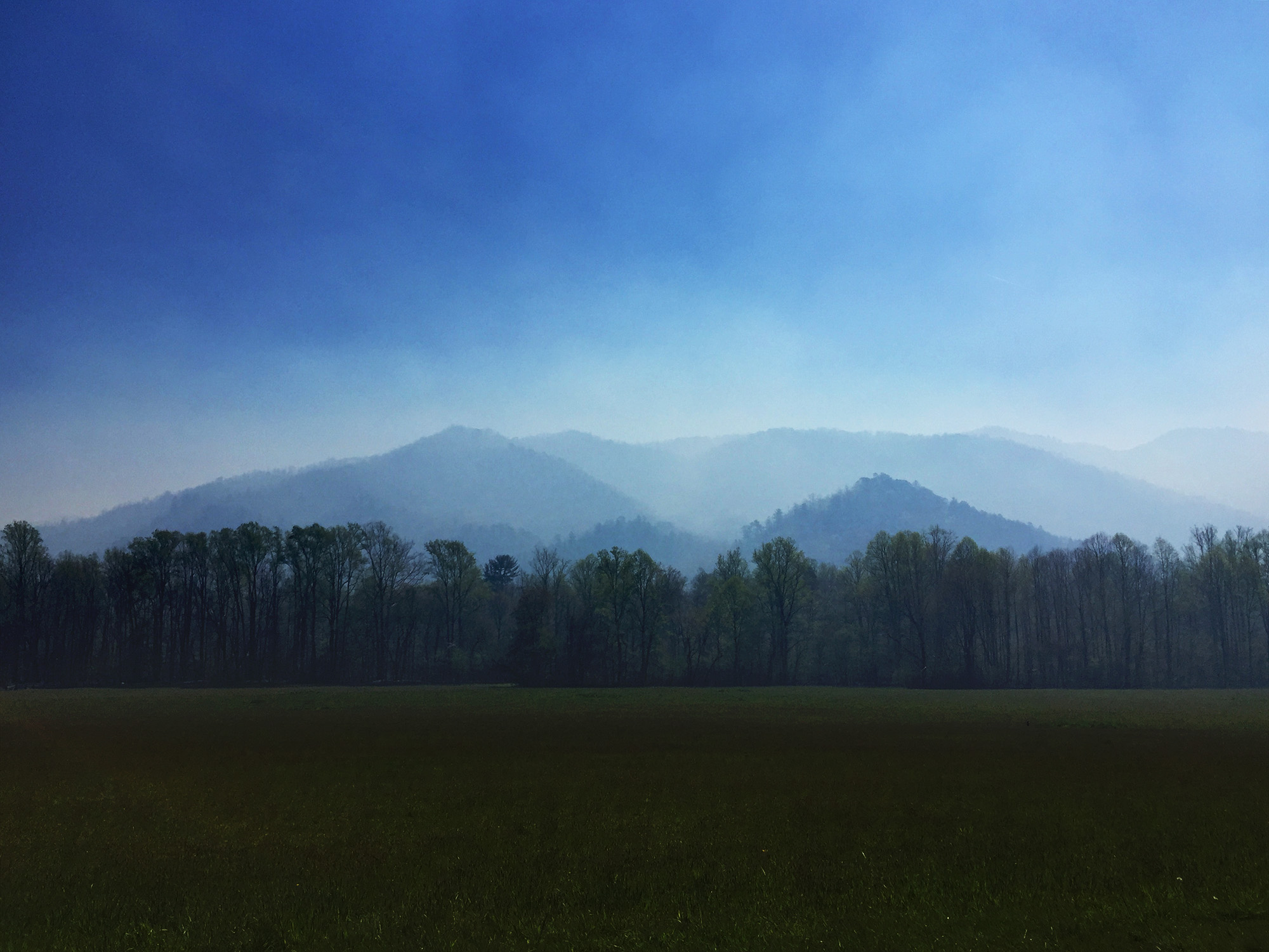Great Smoky Mountains National Park / Darker than Green