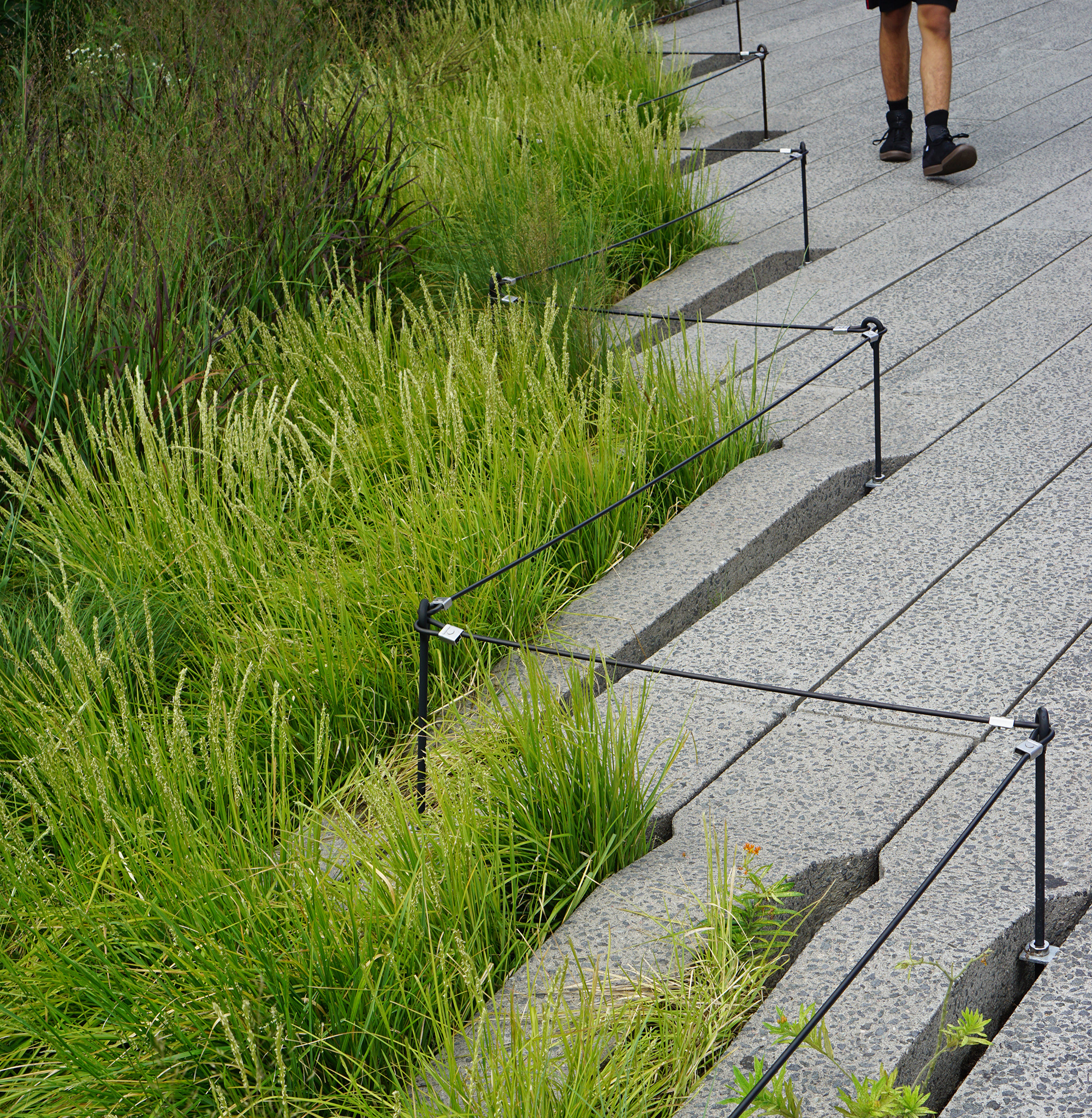 High Line / NYC Green City Guide / Darker than Green
