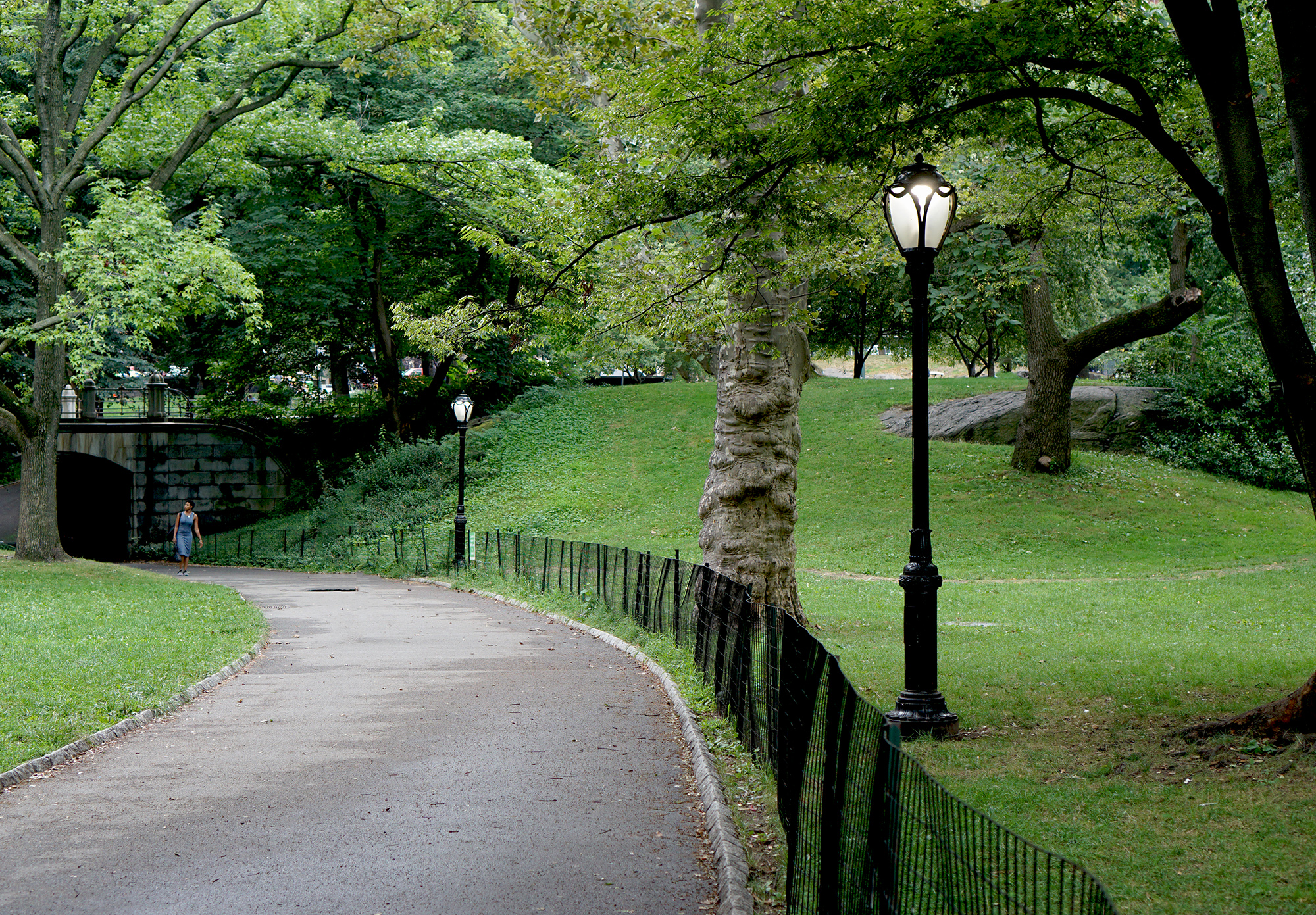 Walking through Central Park / Darker than Green