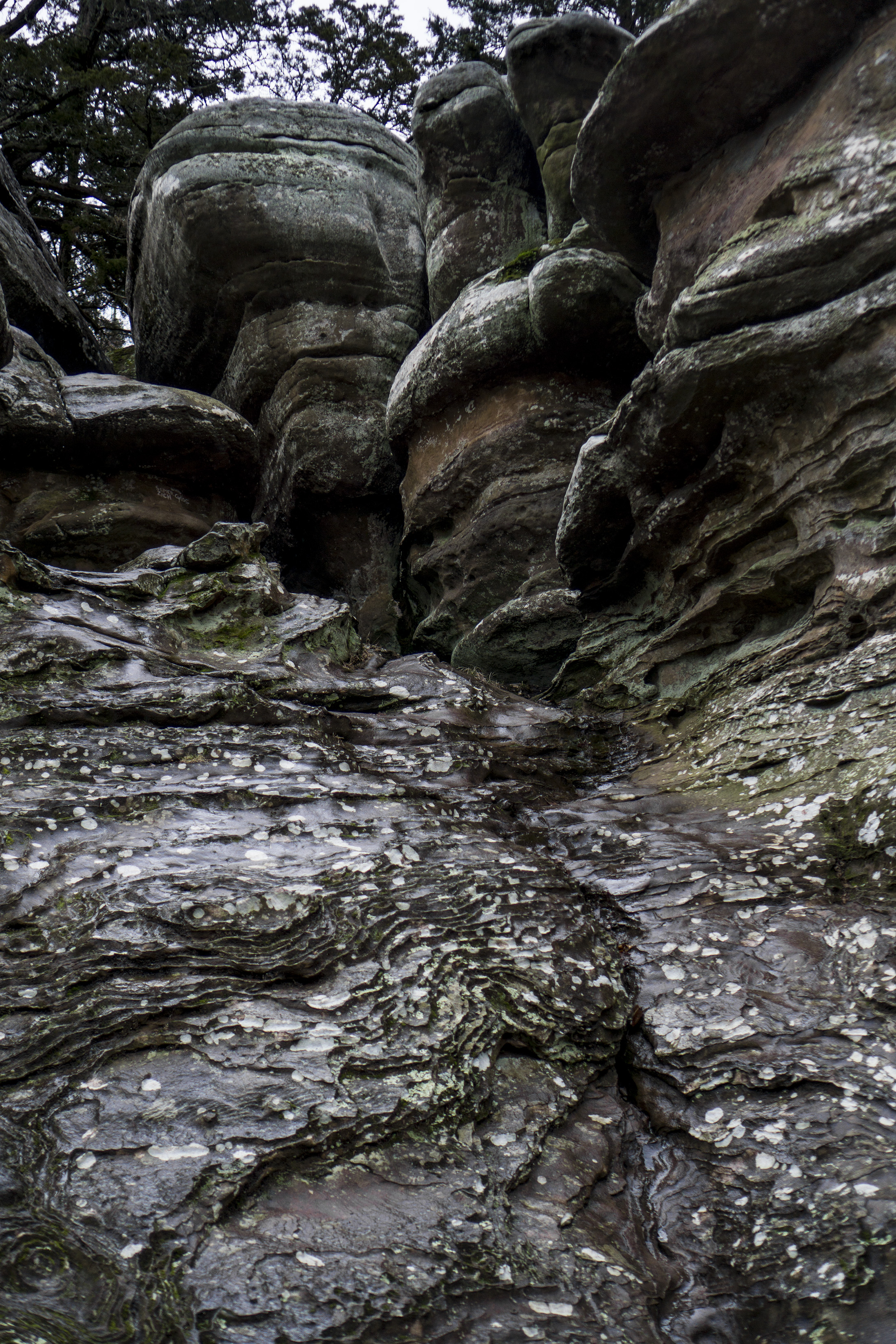 Liesegang bands on rock formation, Garden of the Gods, Shawnee National Forest, IL / Darker than Green