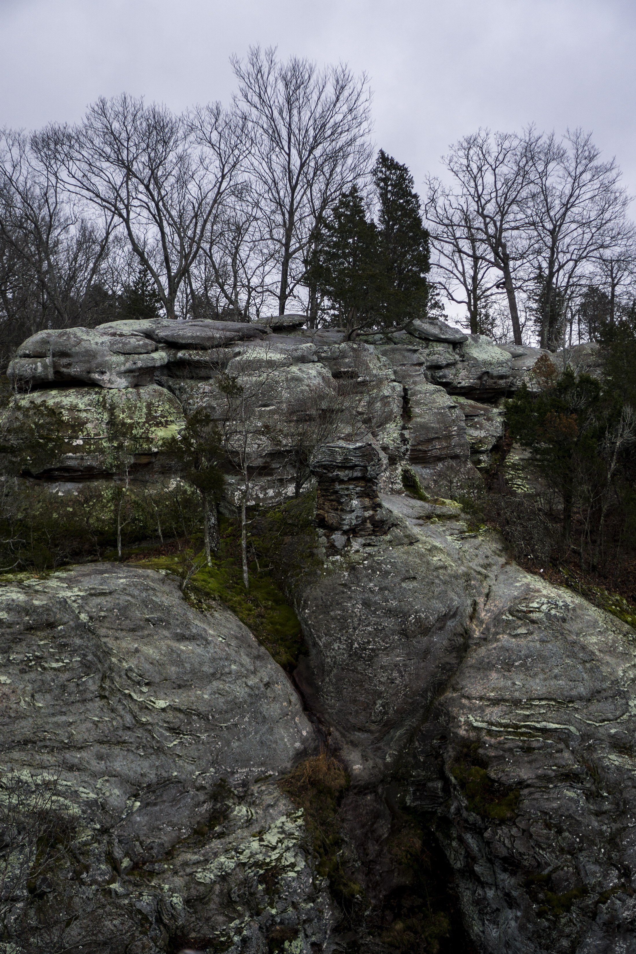 Garden of the Gods, Shawnee National Forest, IL / Darker than Green