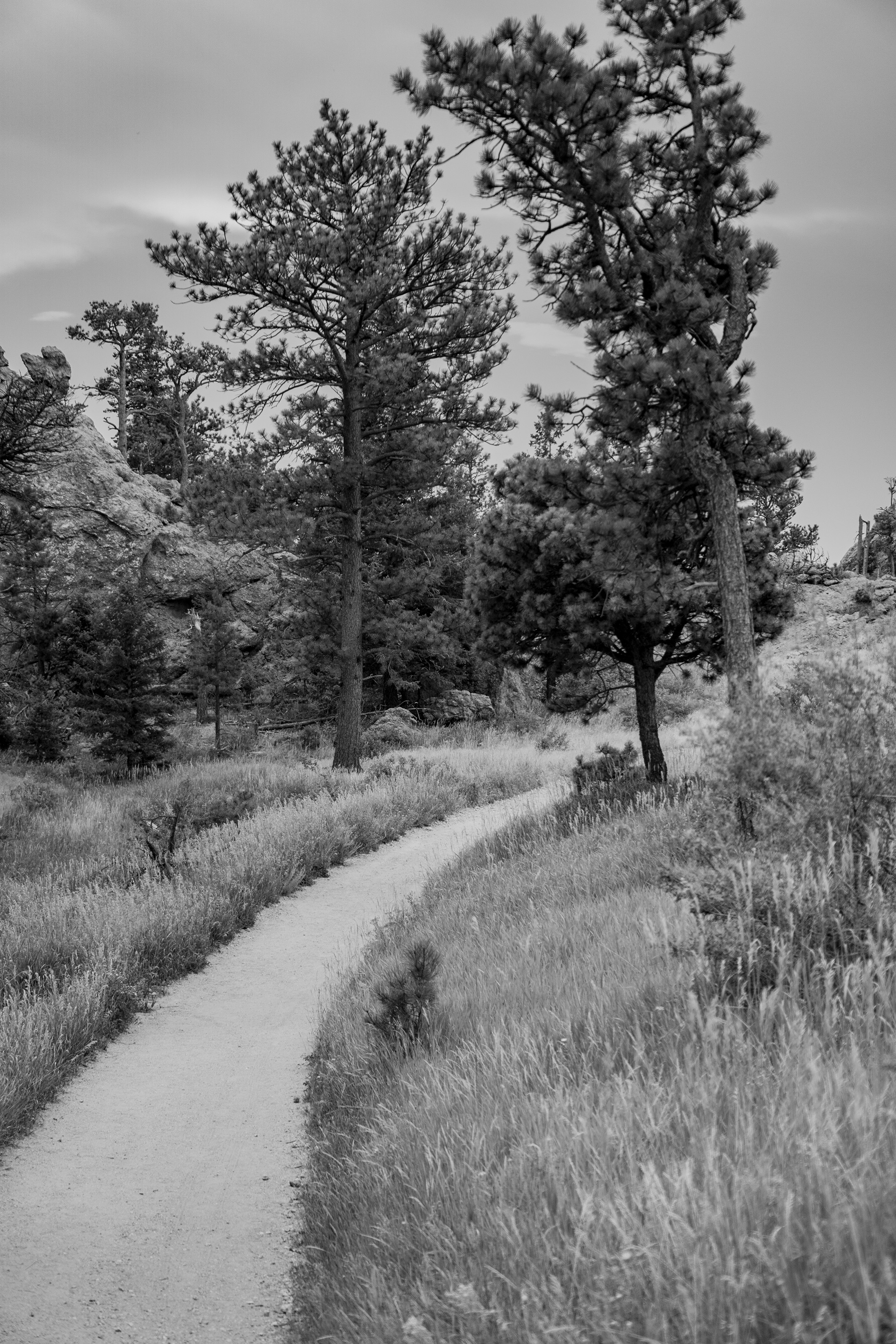 Horsetooth Rock trail, Colorado / Darker than Green