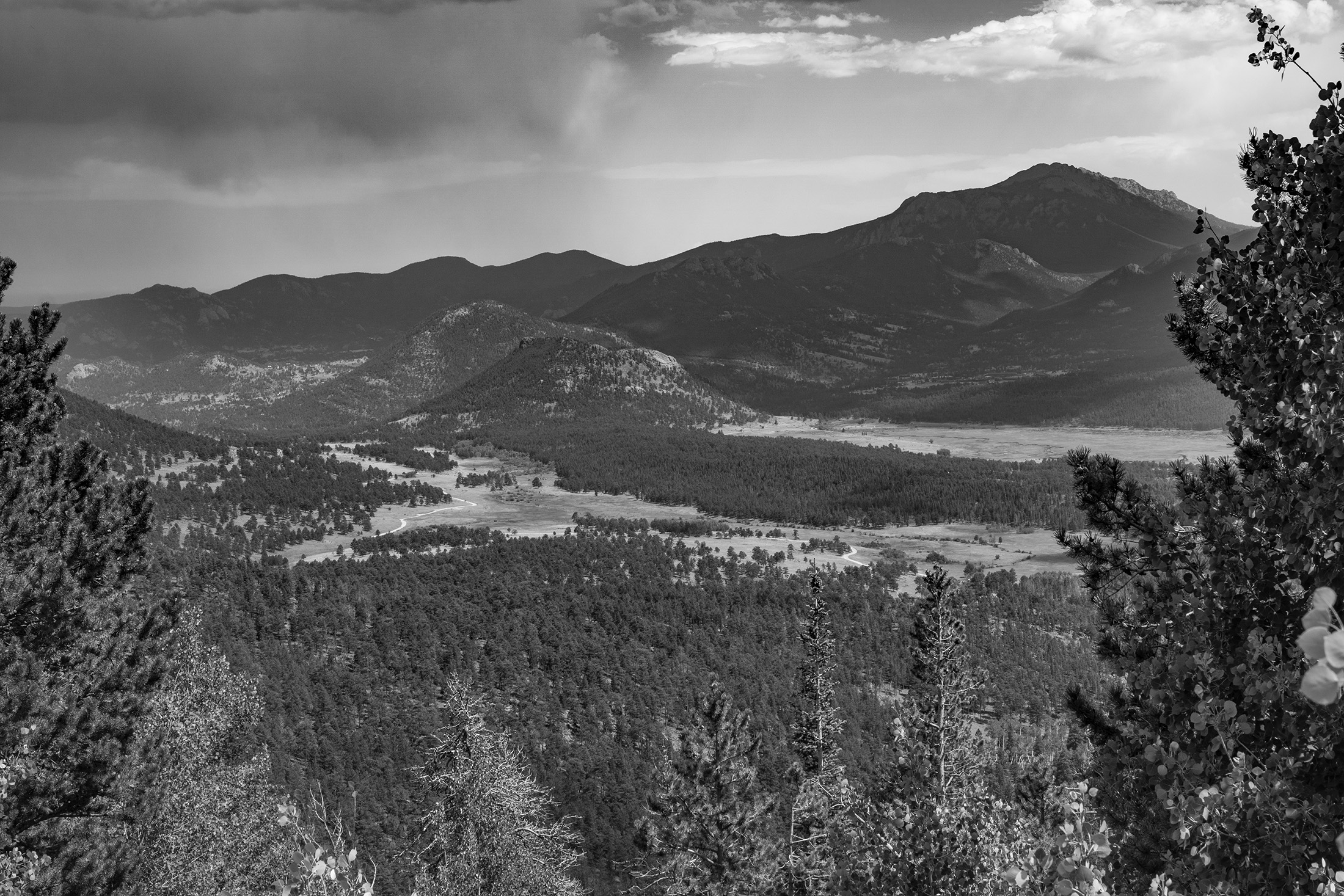 Rocky Mountain National Park / Darker than Green