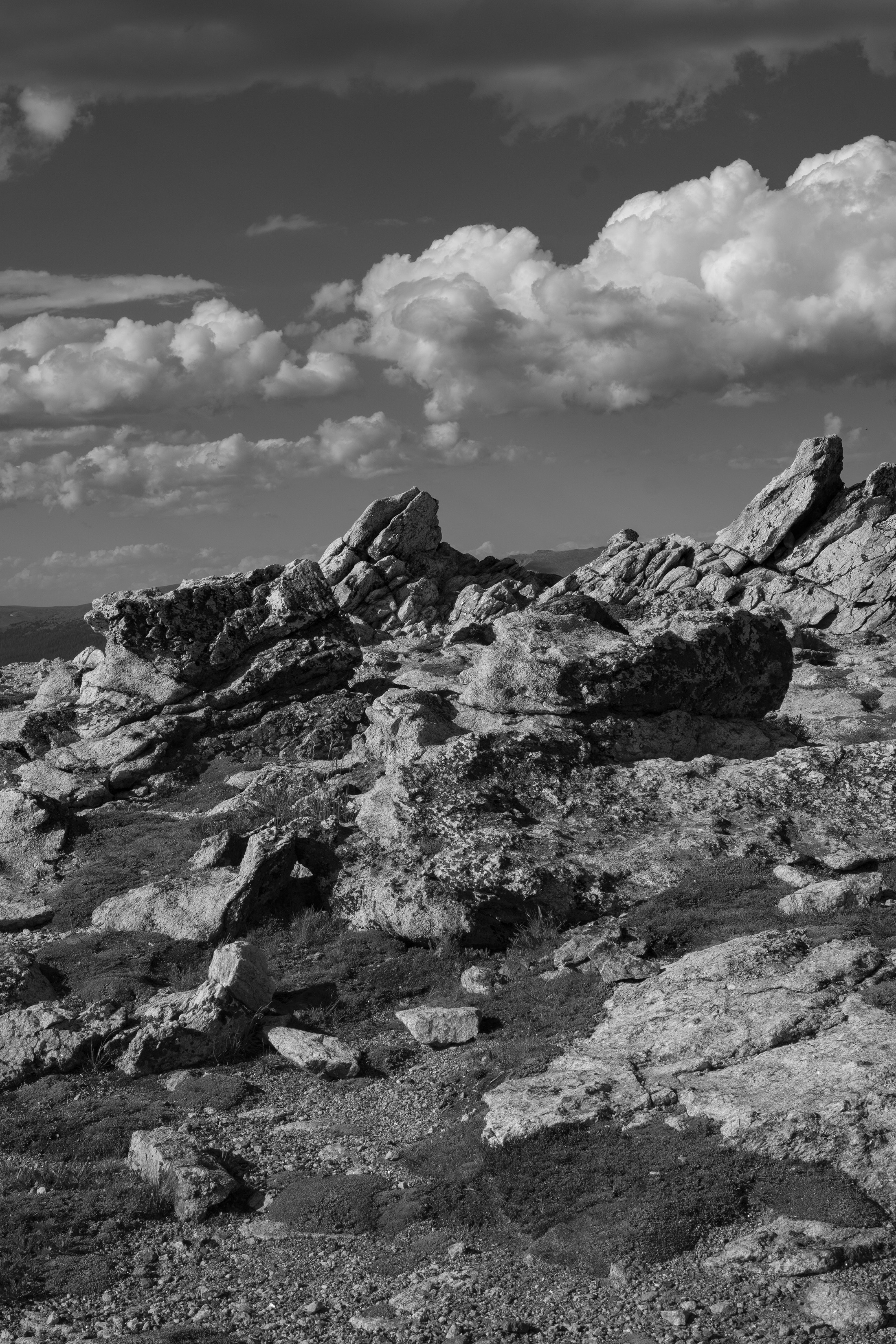 Tundra rocks, Rocky Mountain National Park / Darker than Green