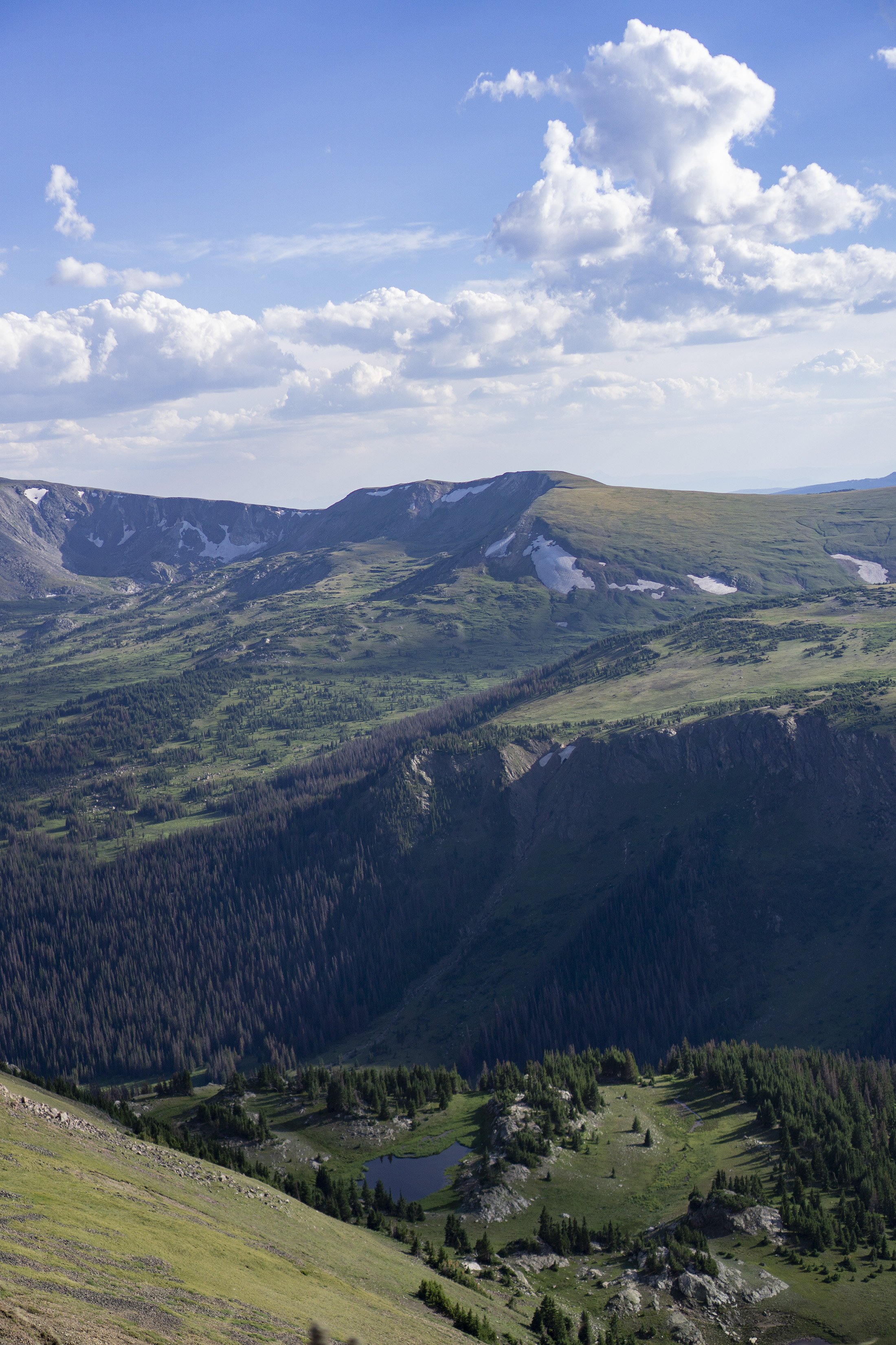 View from Trail Ridge Road, Rocky Mountain National Park / Darker than Green