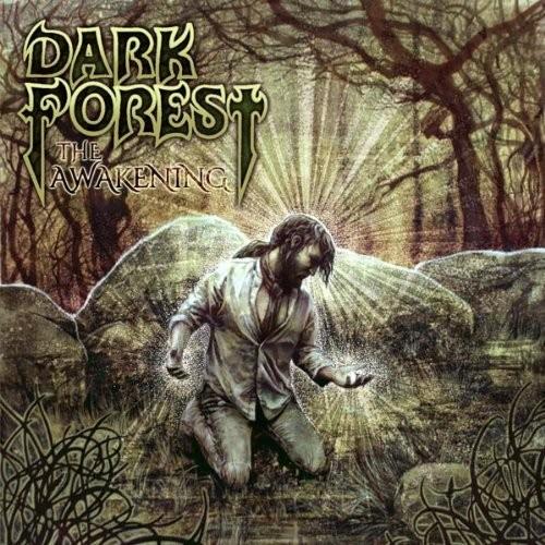 dark-forest-the-awakening